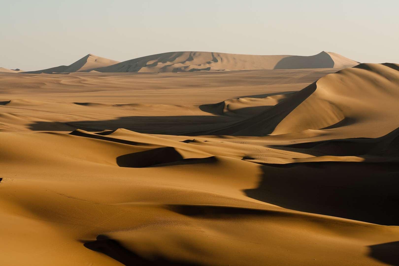 Embracing the Desert Season
