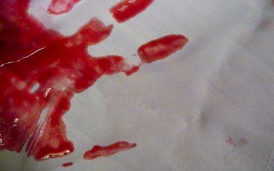 Murders and farm murders in SA