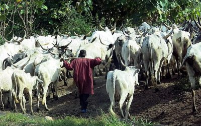 Under attack by Fulani militants