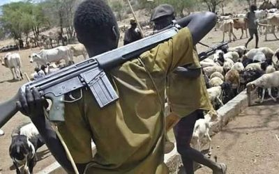 Boko Haram and Fulani herdsmen