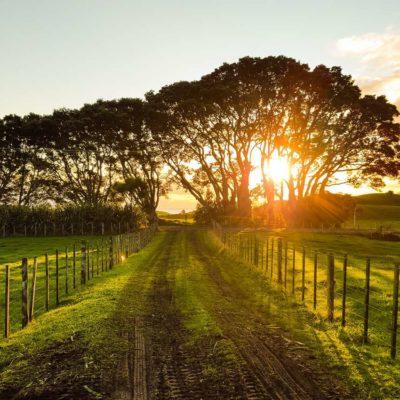 Securing farms through prayer